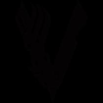 Vikings negro