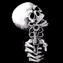 Skull gun