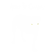 Alice in chains homonimo