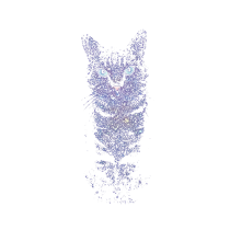 Gatito estelar