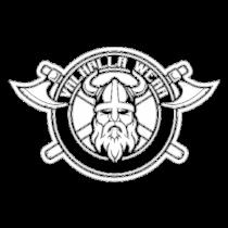 Vikingo 2