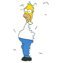 Homero arbusto